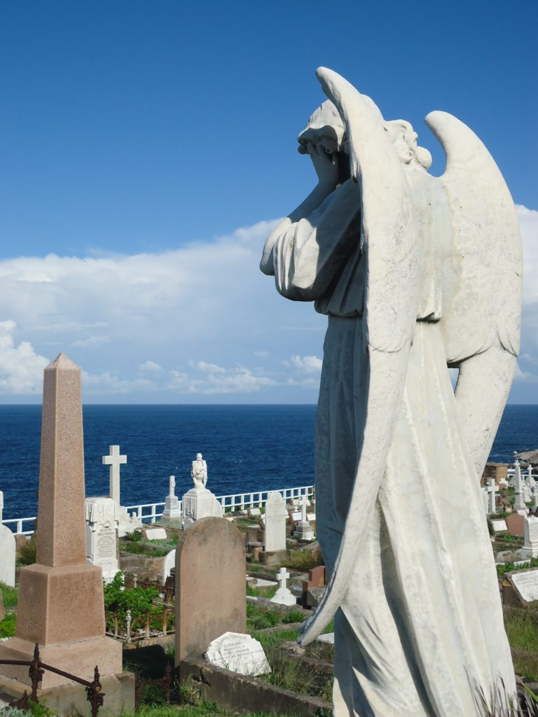 engel Waverley cemetery Bondi to Coogee Coastal Walk