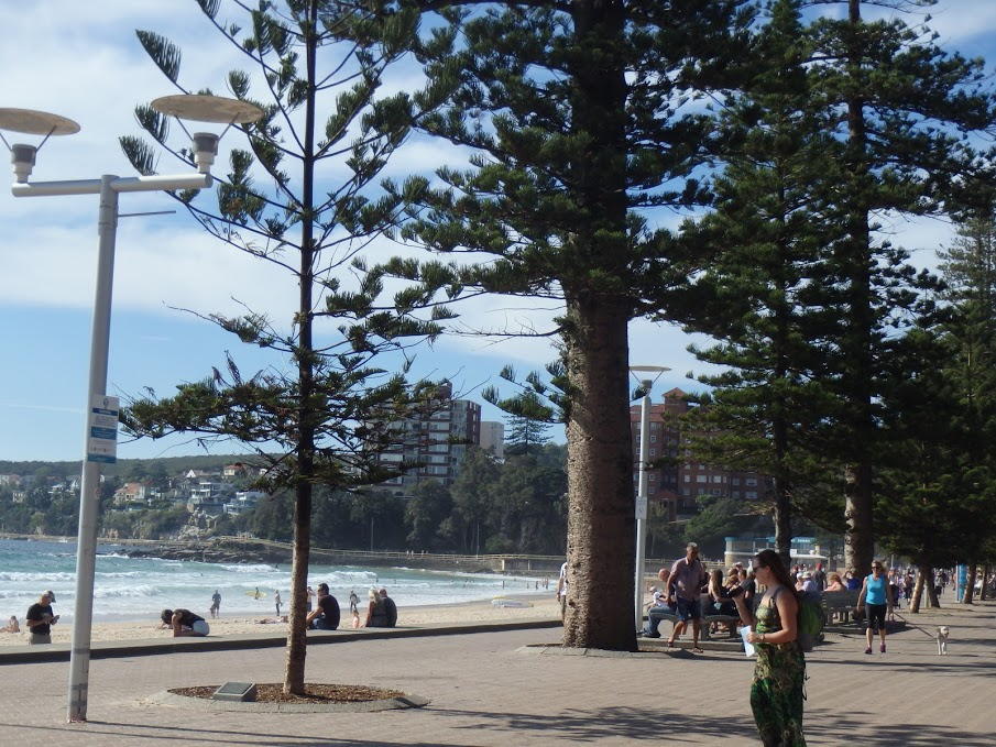 Manly promenade