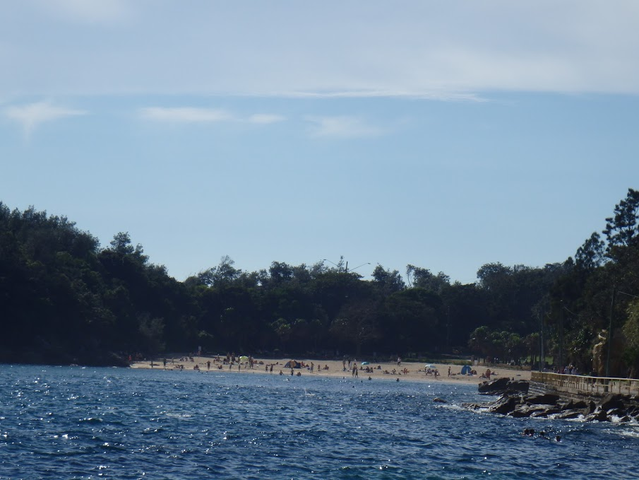 Shelley Beach in Manly