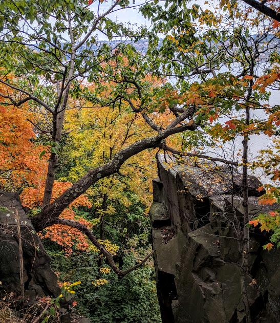 Herfst-aan-de-Hudson