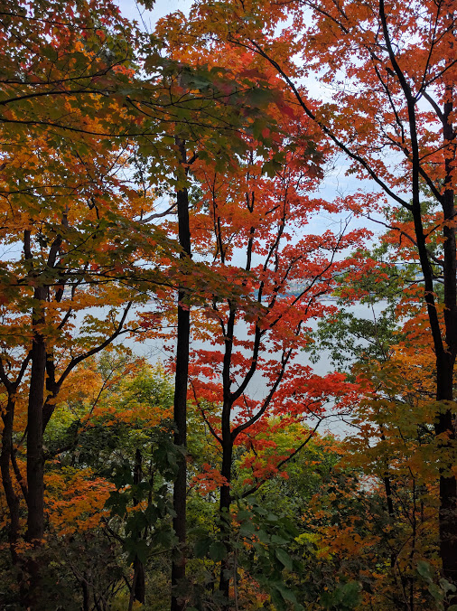 Herfstgeuren opsnuiven aan de Hudson, dit aan de kant van New Jersey, met zicht op New York. Waar? Palisades Interstate Park!