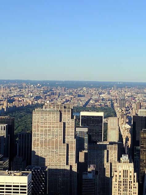 Zicht op Central Park vanuit Empire State Building