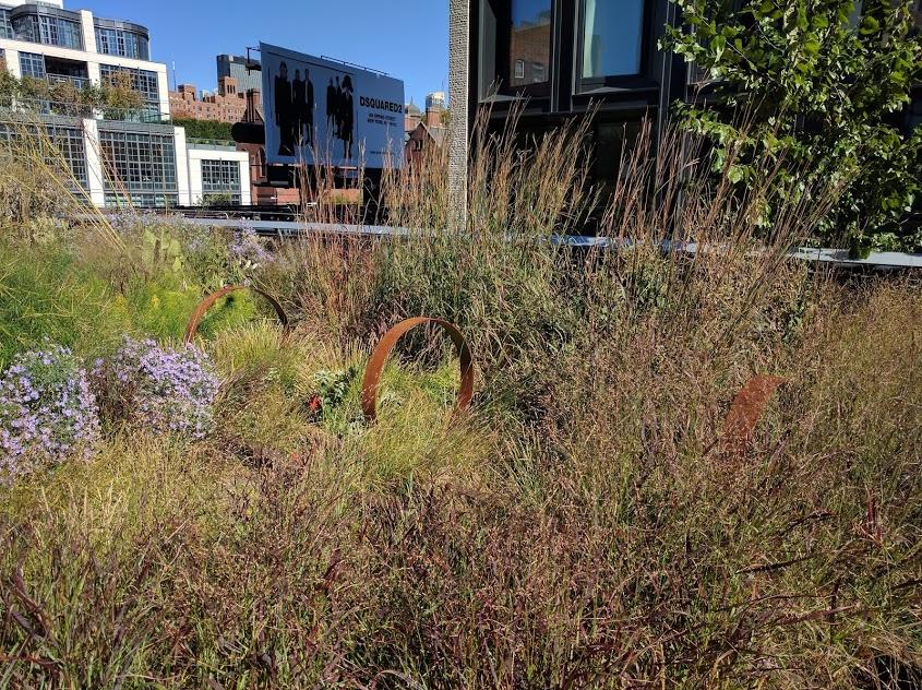 kunst op de High Line in de zomer