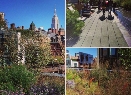 Compilatie High Line in New York