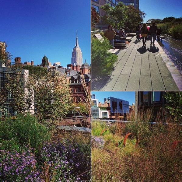 Compilatie High Line in New York
