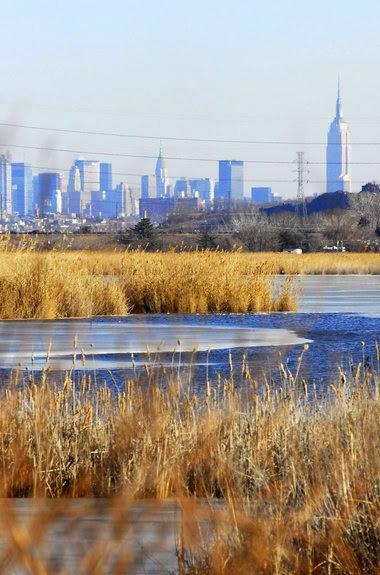 Zicht op NYC van de meadowlands