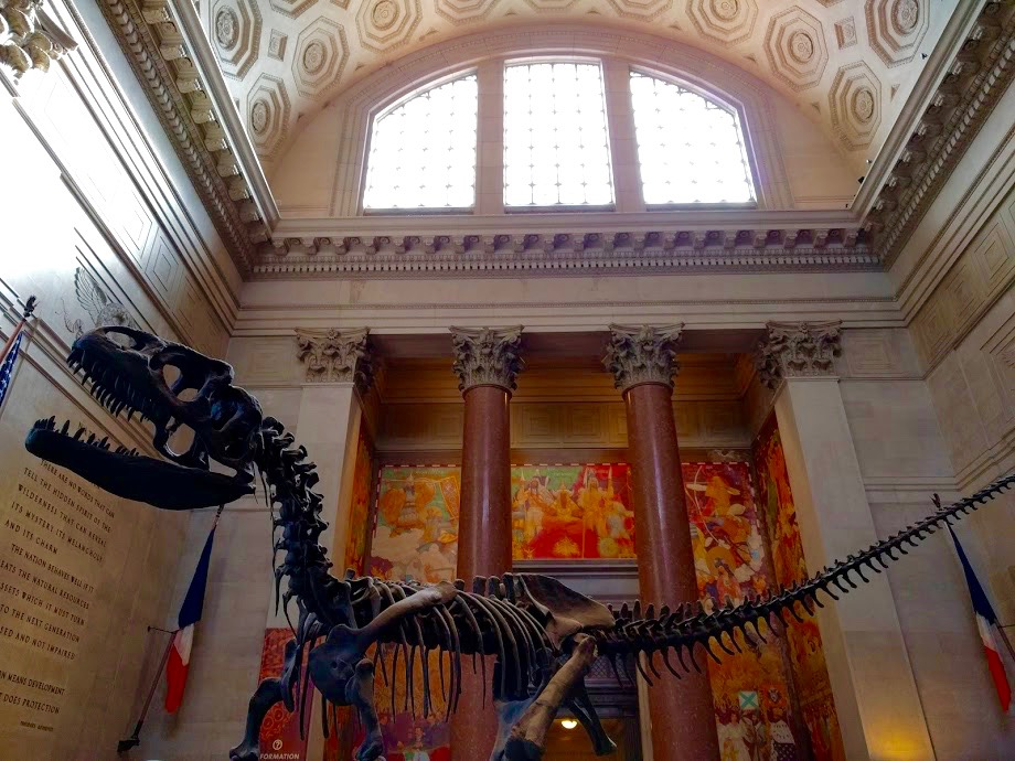 Natural History Museum NYC