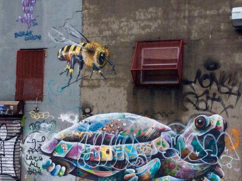 Wesp en schildpad, graffiti, Bushwick