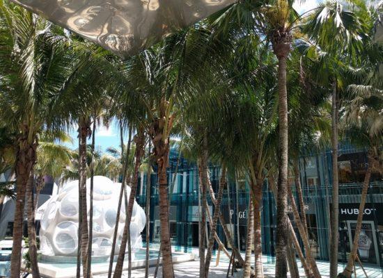 Palm Court in Design District in Miami
