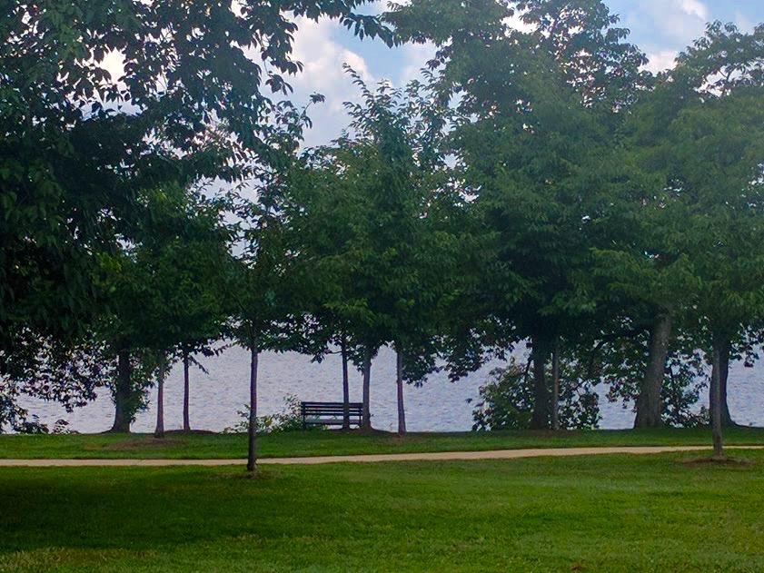Tidal bassin Washington D.C.