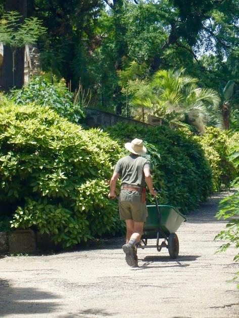 Botanische tuin Montpellier, tuinman met kruiwagen