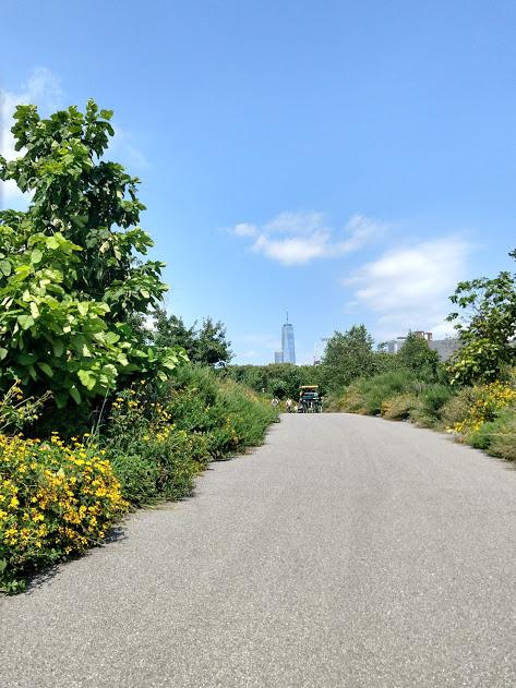 Wandelpad governors Island, zicht op One Tower achter de beplanting