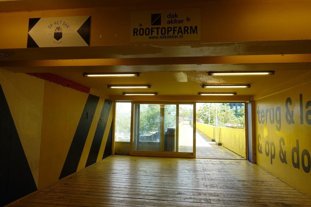 Ingang luchtsingel en rooftopfarm, dakakker, Rotterdam