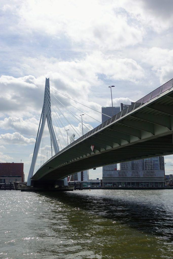 Erasmusbrug, vanuit het stadscentrum, onder de brug in Rotterdam