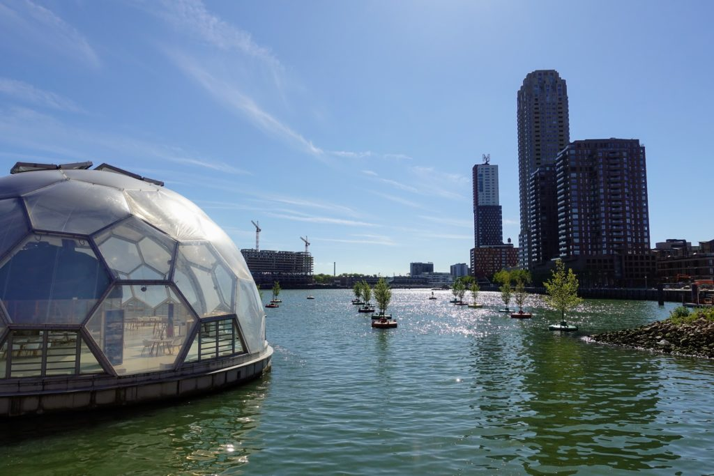 Drijvend Paviljoen in Rotterdam