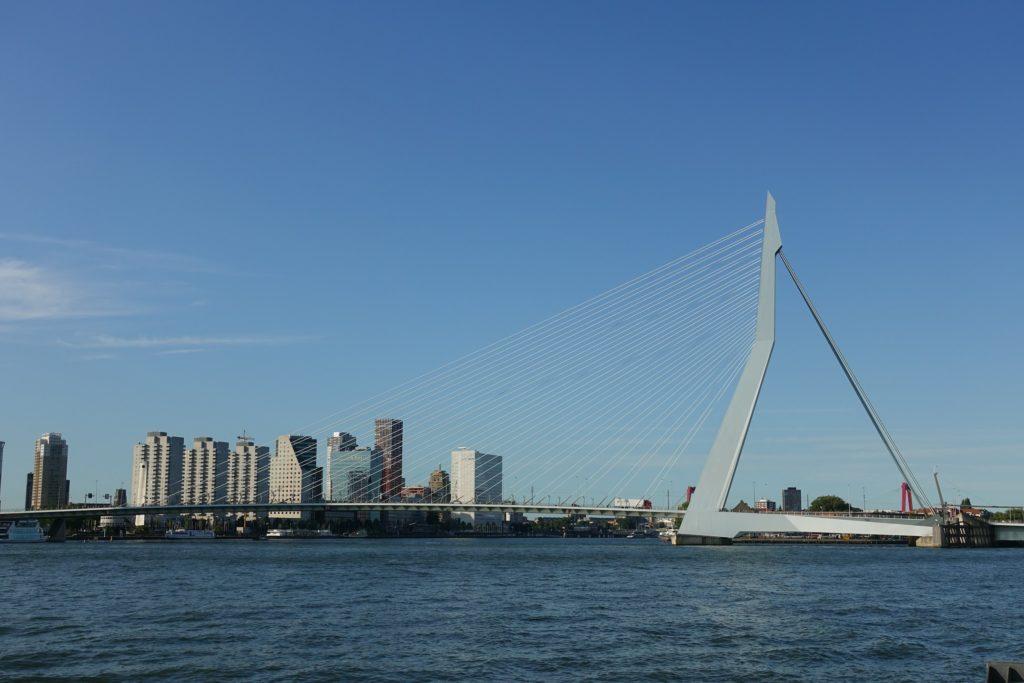 Erasmusbrug Rotterdam, gezien vanaf Wilhelminapier, Kop Van zuid