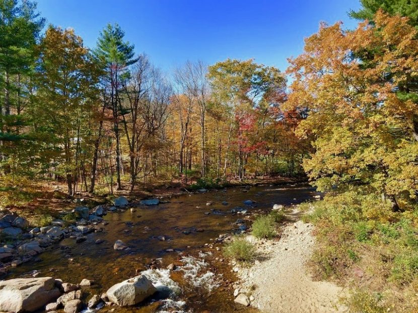 Rivier en bomen met mooie herfstkleuren tijdens een herfstrit in Noord-Amerika