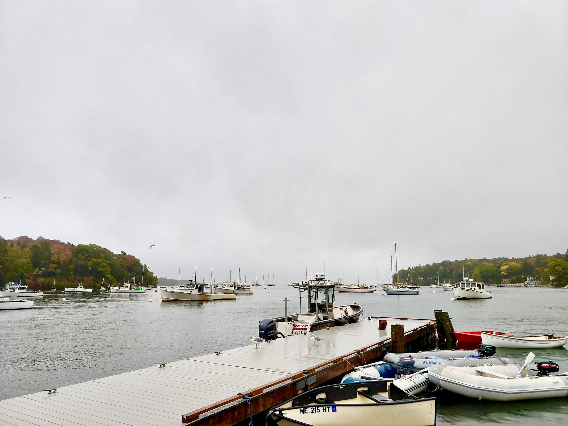Haven in Rockport, Maine